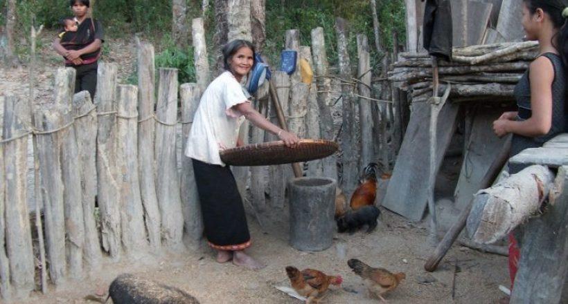 Ativities of villager