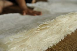 A day as a Paper-making Artisan
