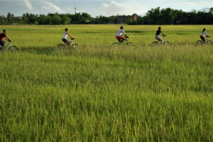 Hoi An Countryside Tour 11