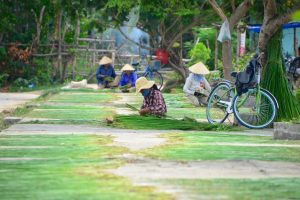 Hoi An Countryside Tour 4