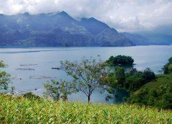Hồ sông Đà