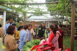 Hipaya Organic Farm Tour