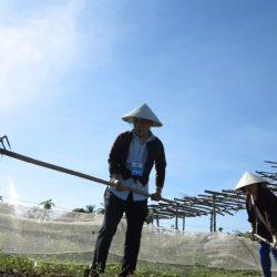 Thanh Dong organic farm 7