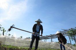 Visiting Thanh Dong Organic Farm