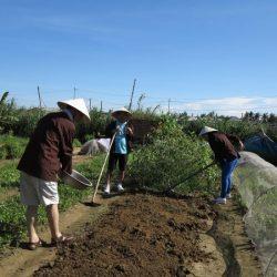 Thanh Dong organic farm 5