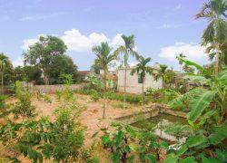 homestay-garden_30798145816_o