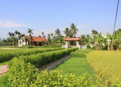 viet-house-in-yen-duc-village---panorama_30199646413_o
