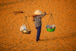 15 Days of Thorough Vietnam