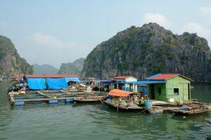 Viet Hai Village 1
