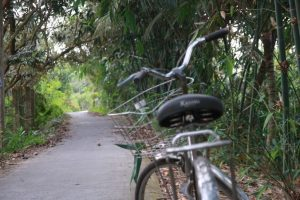 Activities - Cycling (7)