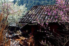 2-day Trek in Thon Tha village