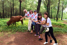 Half-day Exploring Hue's Countryside