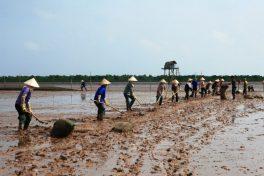 A city break to Nam Dinh province
